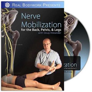 Nerve Mobilization for the Back, Pelvis & Leg