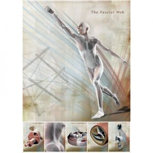 The Fascial Web Poster C