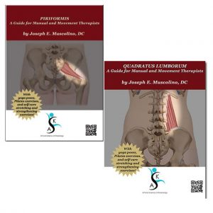 Piriformis & Quadratus Lumborum: A Guide for Manual and Movement Therapists