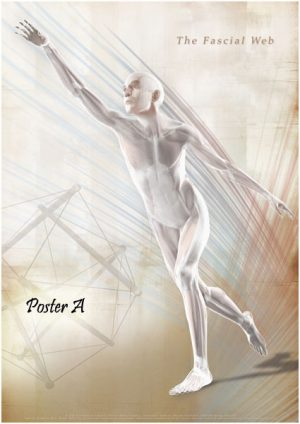 The Fascial Web Poster A