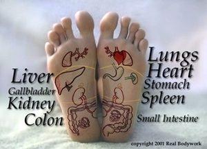Reflexology for the Feet & Hands
