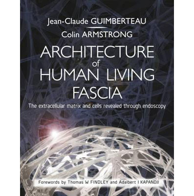 Architecture of Human Living Fascia