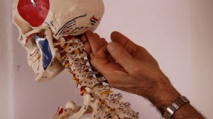 Jean Pierre Barral's New Manual Articular Approach: The Cervical Spine