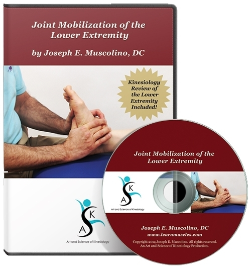 Joint Mobilization of the Lower Extremity