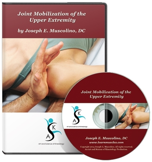 Joint Mobilization of the Upper Extremity
