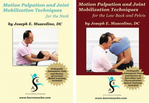 Joe Muscolino Motion Palpation & JointMobilization for the Neck & Lower Back