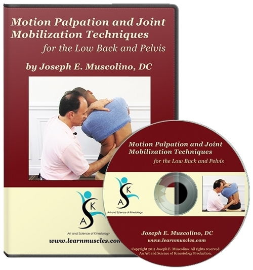 Motion Palpation Assessment and Joint Mobilization Treatment Techniques for the Low Back & Pelvis