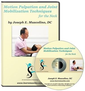 Motion Palpation Assessment and Joint Mobilization Treatment Techniques for the Neck