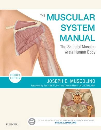 The Muscular System Manual : The Skeletal Muscles of the Human Body (4th Ed)