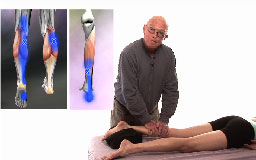 Orthopedic Massage for the Lower Body