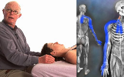 Orthopedic Massage for the Upper Body