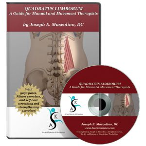 Quadratus Lumborum: A Guide for Manual and Movement Therapists