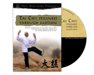Tai Chi, Stillness through Motion