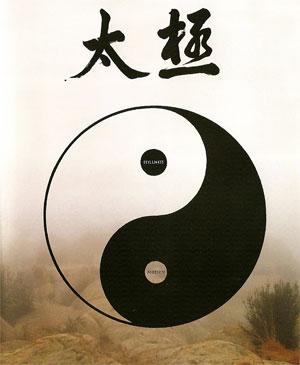 Tai Chi, Stillness through Motion